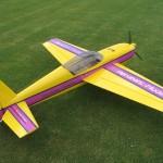 EA2600-geel (3)